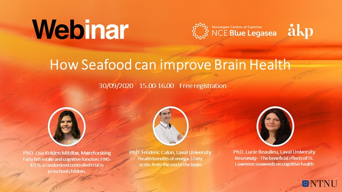 Seafood and brain webinar.png